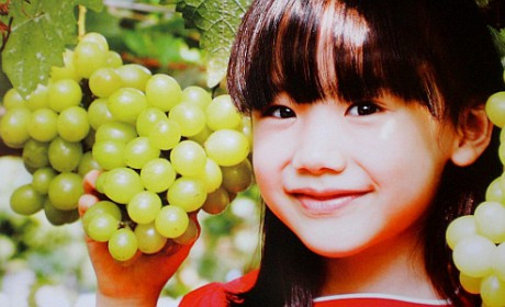 POP : SYNC MUSIC JAPAN