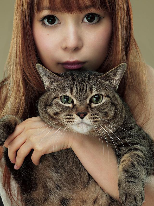 可愛い猫を抱っこする中川翔子